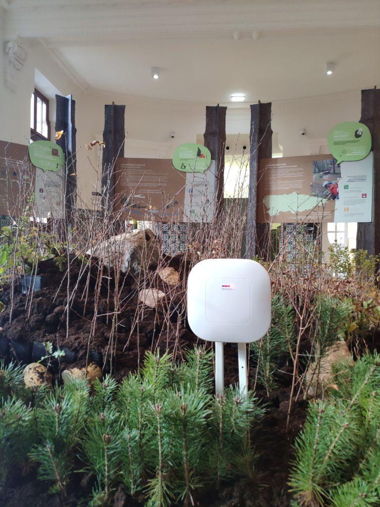 envira iot participa COP25 Asturias un bosque de reserva